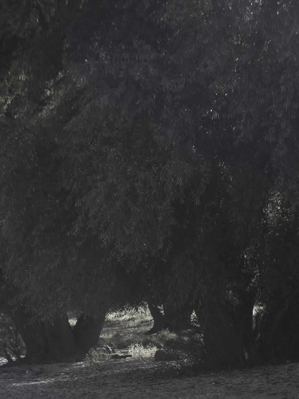 Karsten Rohrbeck: RAM-Passage 12