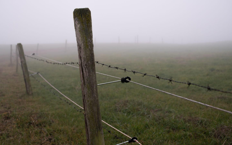 Karsten Rohrbeck: November-Nebel in NRW (5)