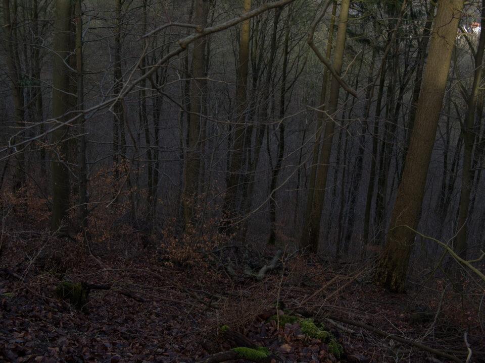 Karsten Rohrbeck: Auf dem Kanonenweg vom Klüth (Bild 4/17)