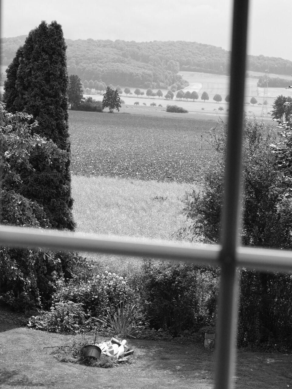 Karsten Rohrbeck: Hochzeit auf dem Land (Bild 4/35)