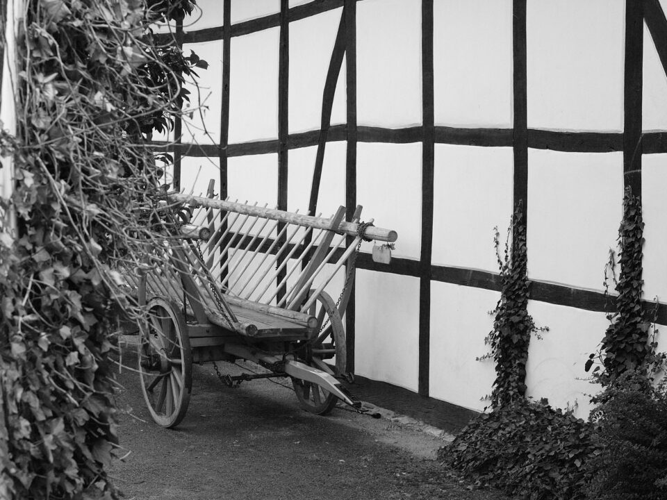 Karsten Rohrbeck: Hochzeit auf dem Land (Bild 9/35)